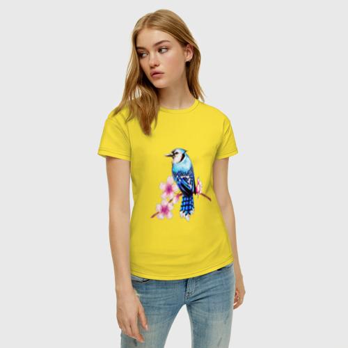 Женская футболка с принтом Сойка на ветке, фото на моделе #1